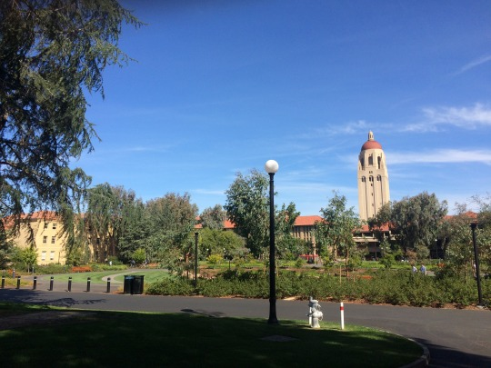 international student guide to stanford