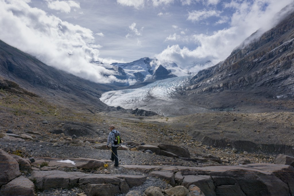the canadian rockies trail guide download