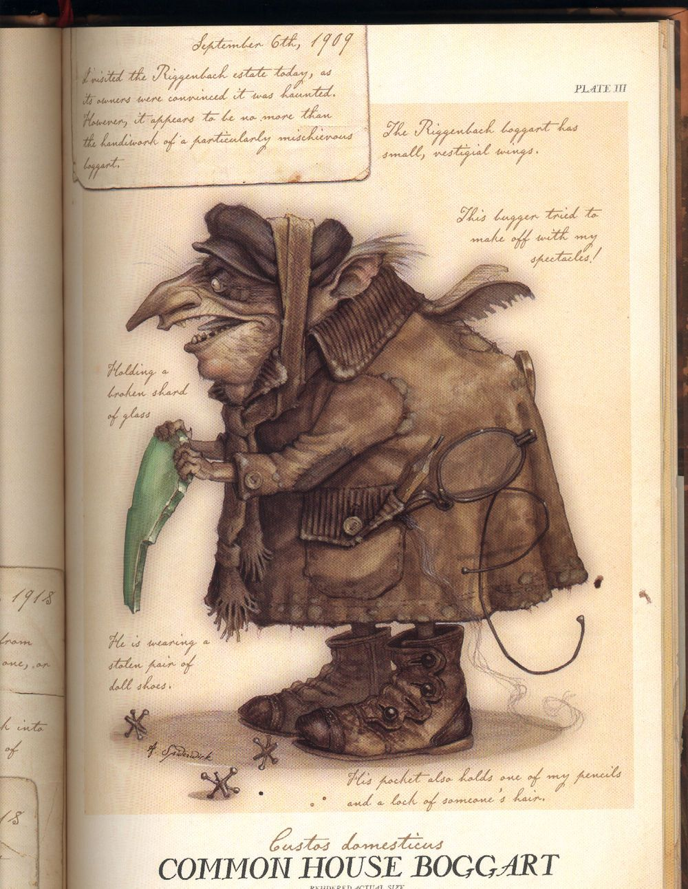 spiderwick chronicles field guide characters