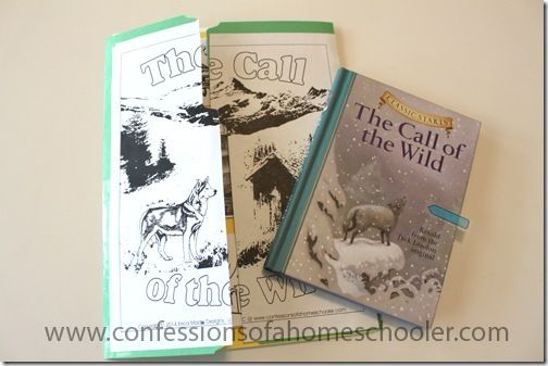 call of the wild novel guide